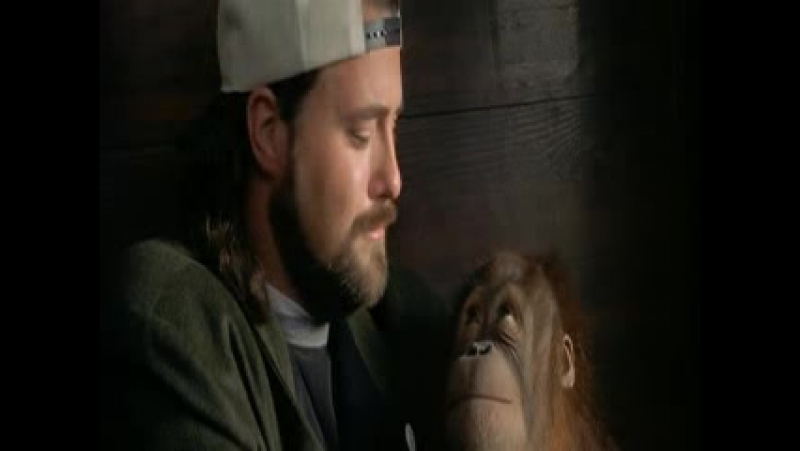Джей и молчаливый Боб наносят ответный удар