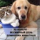 Екатерина Фурцева фото #6