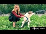 Instagram post by Ольга Орлова  29.09.2017