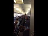 cabin crew DEMO