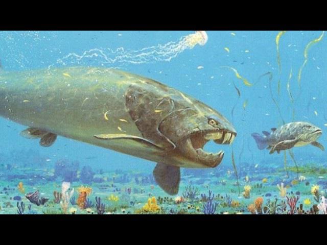 Палеонтолог Александр Марков — Происхождение жизни, начало эволюции на Земле