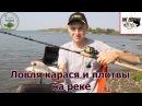 Ловля карася и плотвы на реке – рыбалка на Sportex Exclusive Lite Feeder LF 3604!