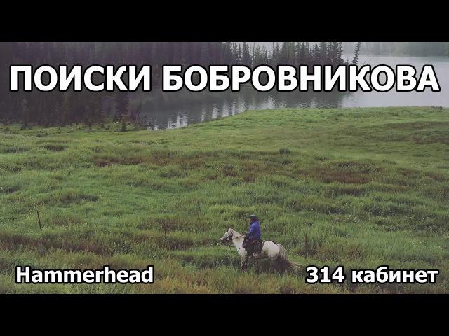 Hammerhead - Поиски Бобровникова