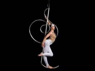 Stephanie Wills Aerial Treble Clef, Created by Jasmine Straga & Stephanie Wills
