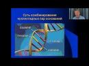 Клёсов А.А. Лекция 2: Основные положения ДНК-генеалогии