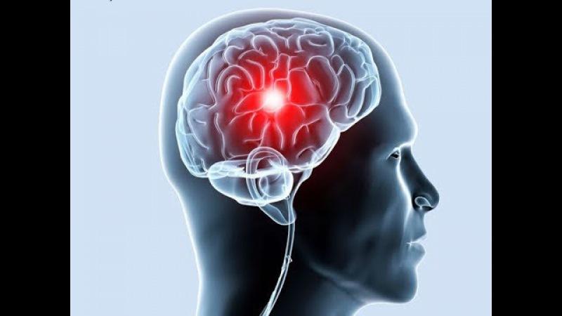 мозг, гипоталамус влияние аффирмаций на их работу, воздействие на психику
