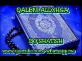 Bozordagi holat Abdulloh Domla
