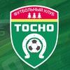 Киберфутбольная команда «Тосно»   Tosno eSports