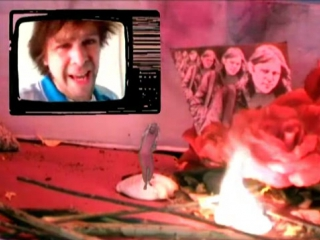 Ariel Pink - I Wanna Be Young