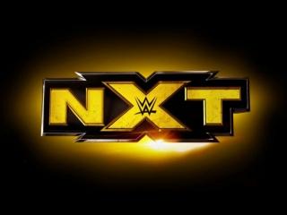 WWE NXT 17.07.2013 -  WWE NXT - Charlotte vs. Bayley (Charlotte's debut)