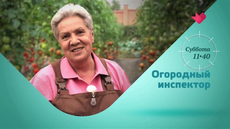 Анонс Огородный инспектор