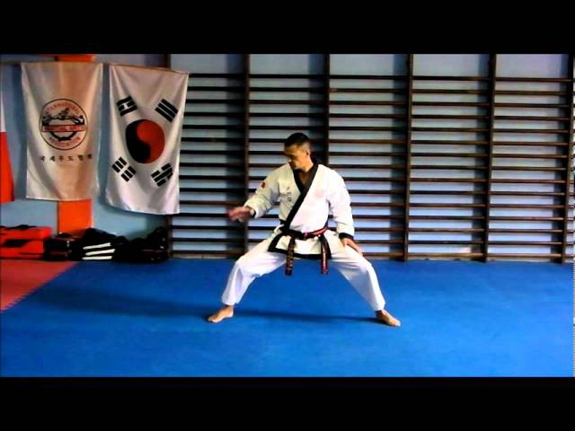 Basic stances in Tang Soo Do