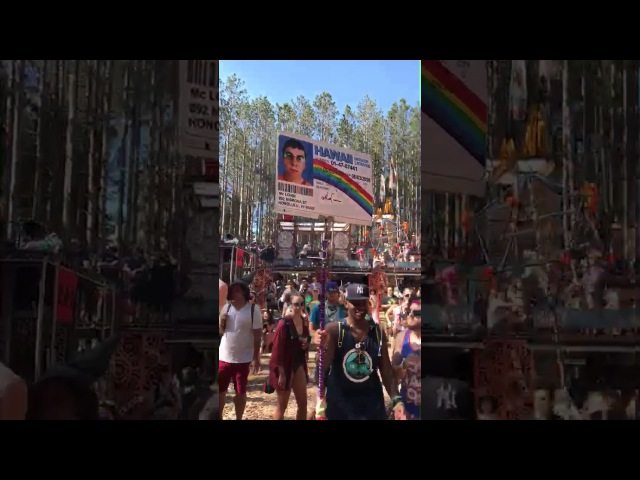 Chris Mintz-Plasse from Superbad Kickass at Electric Forest 2017