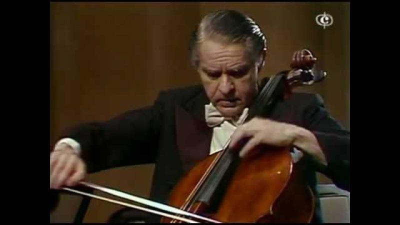 E. Bloch - Schelomo - Rose