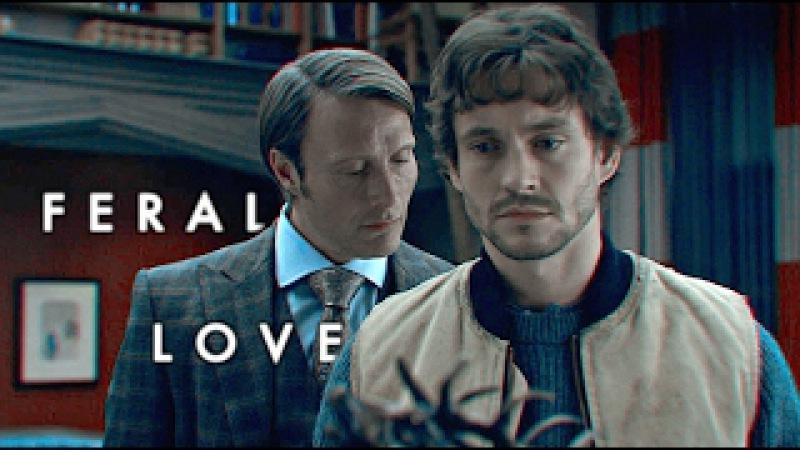 Hannibal x will    feral love