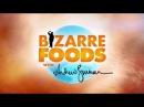 Дикие блюда с Эндрю Циммерном Марокко | Bizarre Foods Andrew Zimmern Marocco
