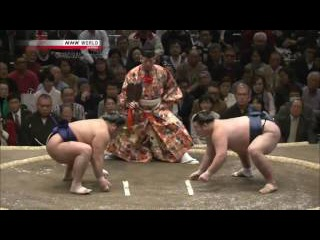 Sumo - Hatsu Basho 2017 Day 1 - January 8th