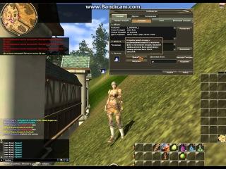 Начинаем играть в R2 Online Как поставить значок гильдии. Обзор часть-12
