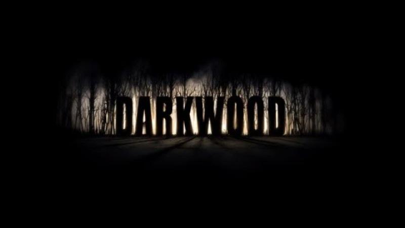 Darkwood - пытаюсь осмотреться 7