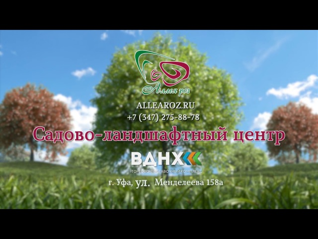 Садовый центр «Аллея Роз»