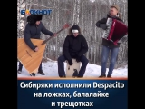 Despasito - Сибирь)