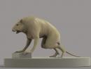 крыс мутант для проекта РЕЛИКТ