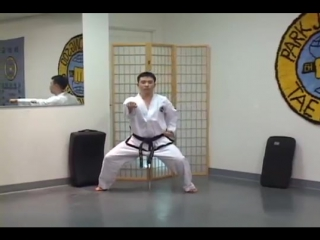 Grand Master Jong Soo Park Mastering Taekwondo Under Balck Belt Patterns