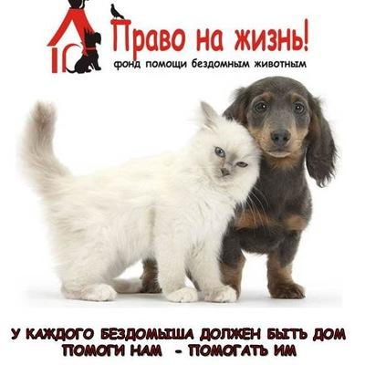 Помощь животным Ноябрьска
