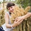 Foodjistica.com -вся ЕДА от частных мастеров