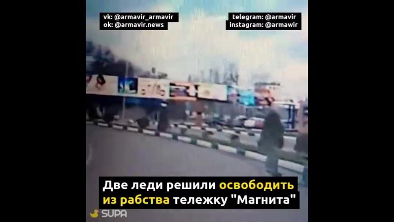 Драма со счастливым концом в Армавире 22.11.17 ул. Воровского