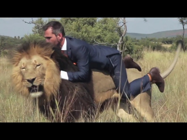 Diviners - Savannah (ft. Philly K) Kevin Richardson with Lions