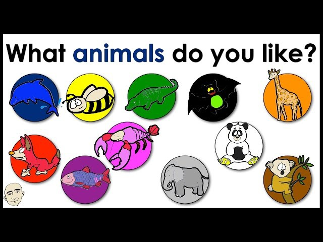 What Animals Do You Like? | Name of Animals | Colors | Easy English Conversation Practice | ESL/EFL