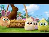 Великоднй привт вд пташенят з Angry Birds у кно