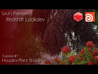 Patreon Course Preview - #1 - Houdini Plant Shading