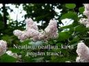 Jaunība Latviešu dziesmas YouTube