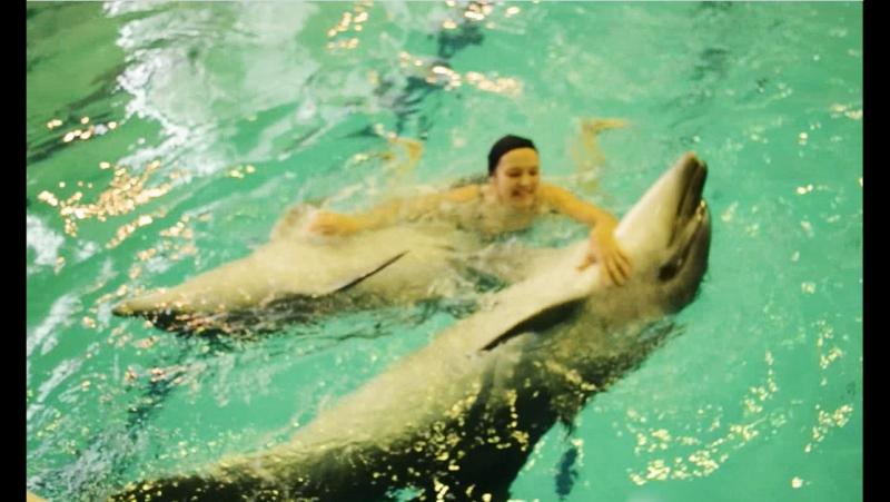 Я словно в детстве Катаюсь на дельфинчиках Ах
