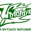 Асоціація футзалу Житомирської області