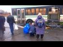 В Колпино на пешеходном переходе рейсовый автобус сбил девушку