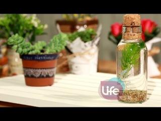 Life樂生活 第三季 綠色環保花器(下)
