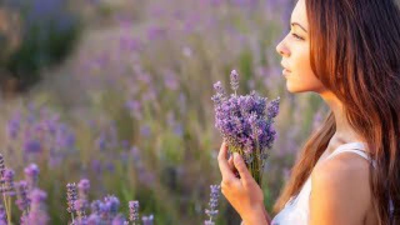 Поэма Как хочется душевной красоты…Ирина Самарина-Лабиринт