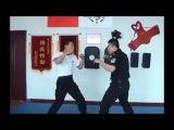 Chinese police MA skills demo Zhao Hua - Shanxi, China #wayofmartialarts ☯