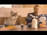 Don Diablo ft. A R I Z O N A - Take Her Place  Official Music Video