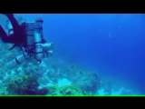 Мировой рекорд по погружению с аквалангом