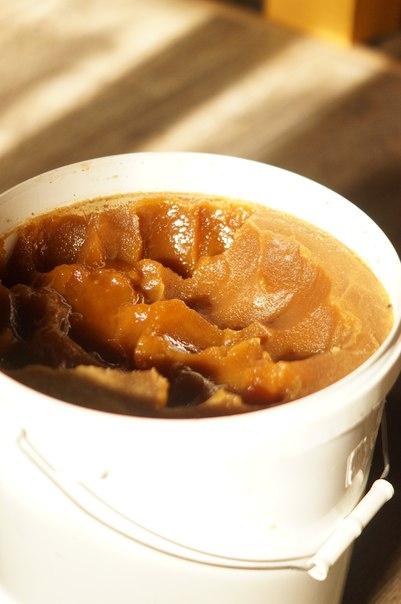 Мёд Алтайский (разнотравье) ведро 21-22 кг