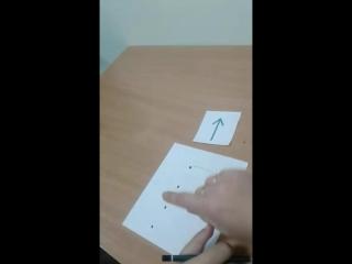 Графо-моторная координация и пространственная ориентировка.