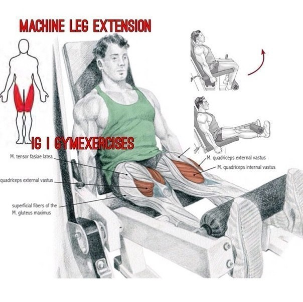 Лучшие упражнения для ног