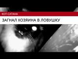 Главные видео 27 октября