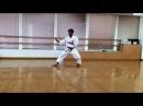 空手道 形 松濤館 型 平安 初段 karatedo syotokan kata heian shodan