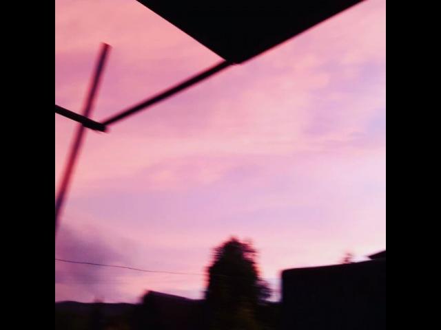 Vermicelli_01 video