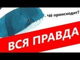 РАЗОБЛАЧЕНИЕ: Синий кит, #морекитов, #f57, суицид и группы смерти. Всё ли так плохо?